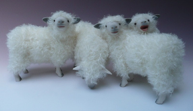 English Cotswold Flock of Sheep
