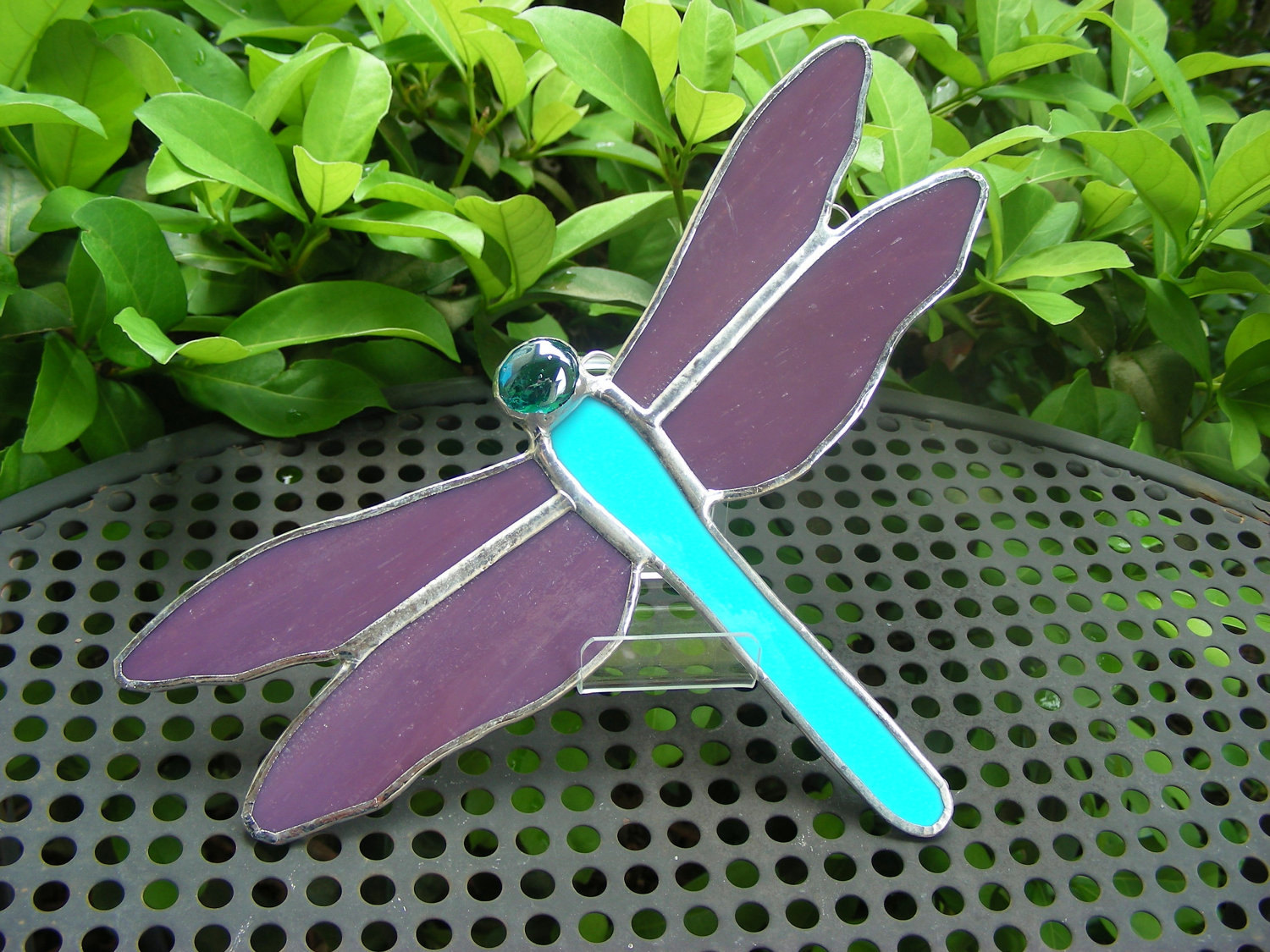 Blue & Purple Dragonfly