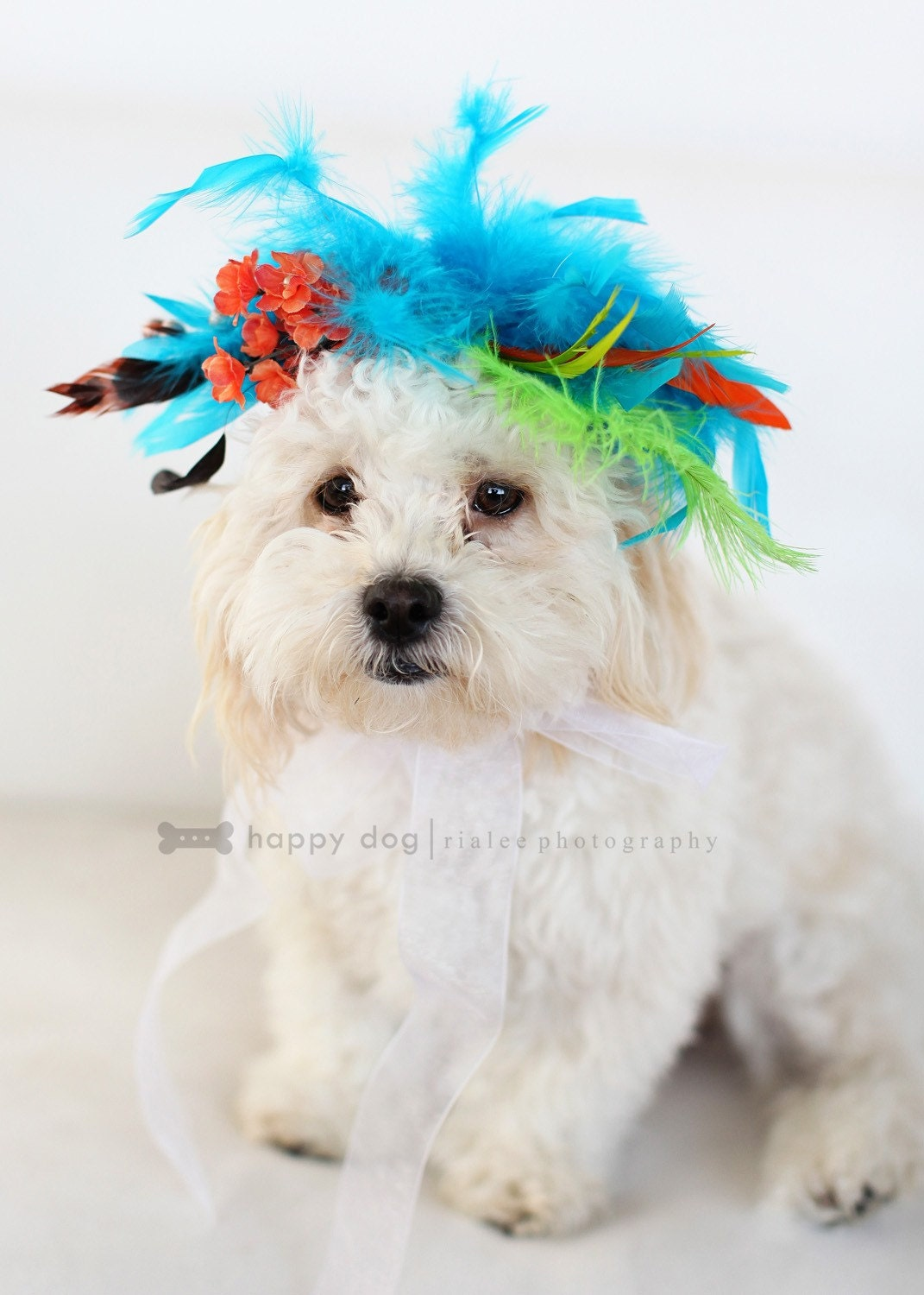 CUTIE PUPtootie hairpiece for pets, puppies, collar, little dog, photoshot props, canine, small dog, doghairpiece