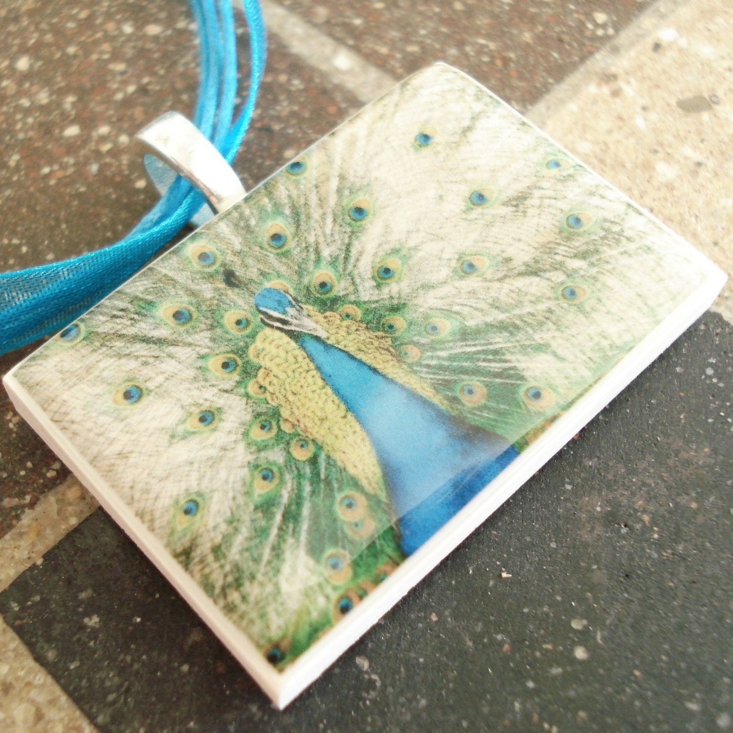 Beautiful Peacock Close Up polymer clay photo picture pendant on organza ribbon necklace