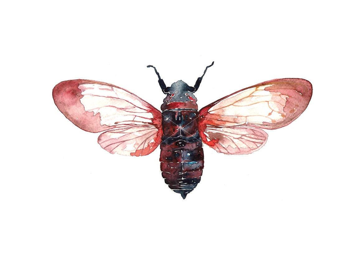 Cicada / Watercolor illustration print handmade decoration red blue purple nature - BarbaraSzepesiSzucs