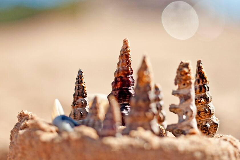 "CHRISTMAS CARD Christmas Sand Castle Original 6"" x 4"" Photo Mounted on Heavy Weight Card Stock. Sandcastle, Beach, Shells, Beach Christmas - PhotographyByAnita"