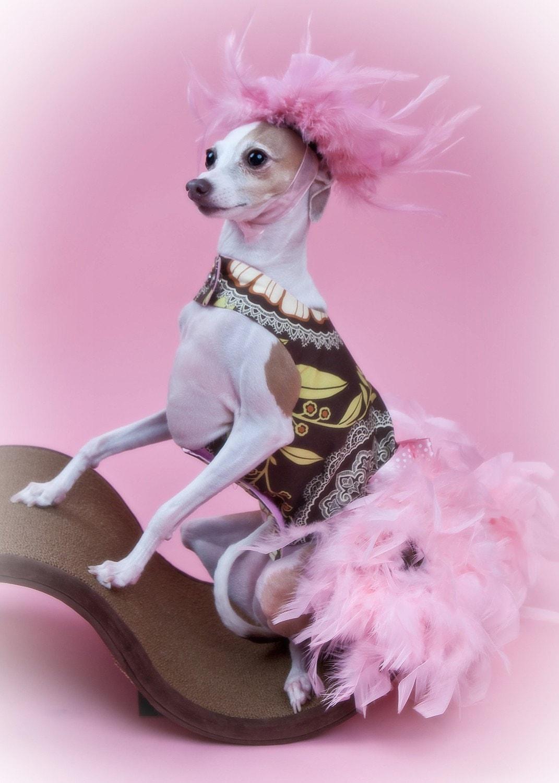 Ретро Розовые перо собак Harness платье