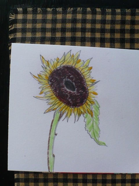 Sunflower Note Card Set, Original Artwork, Flower