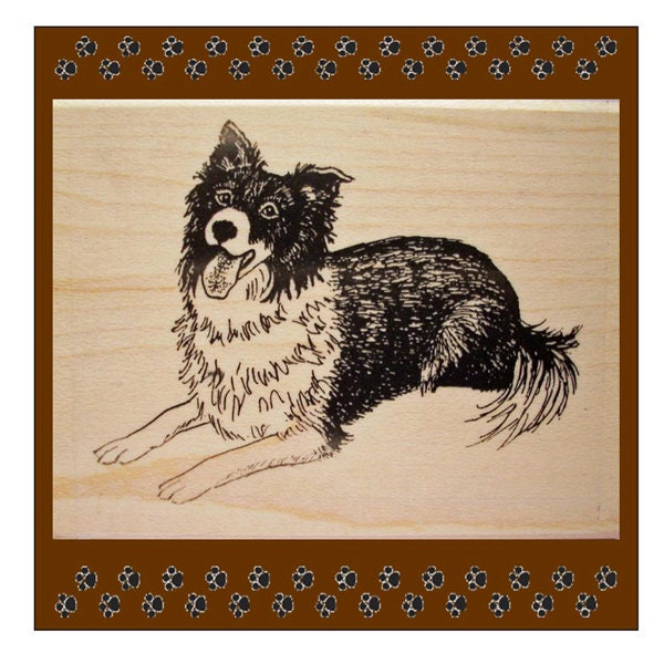 Border Collie Resting Rubber Stamp - Triskelt