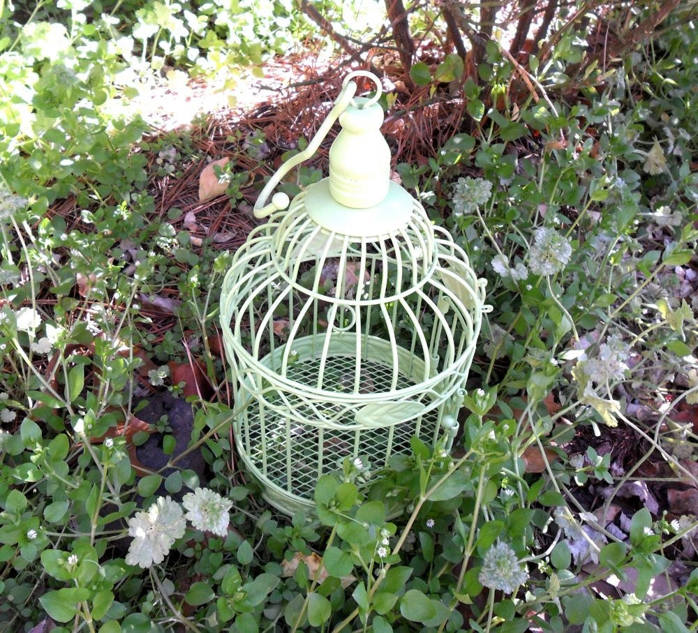 Apple Green Birdcage - indigobutterflyco