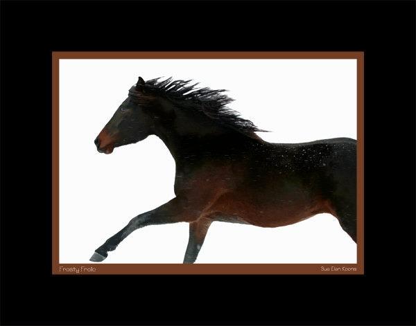 Frosty Frolic - 11x14 Horse Print