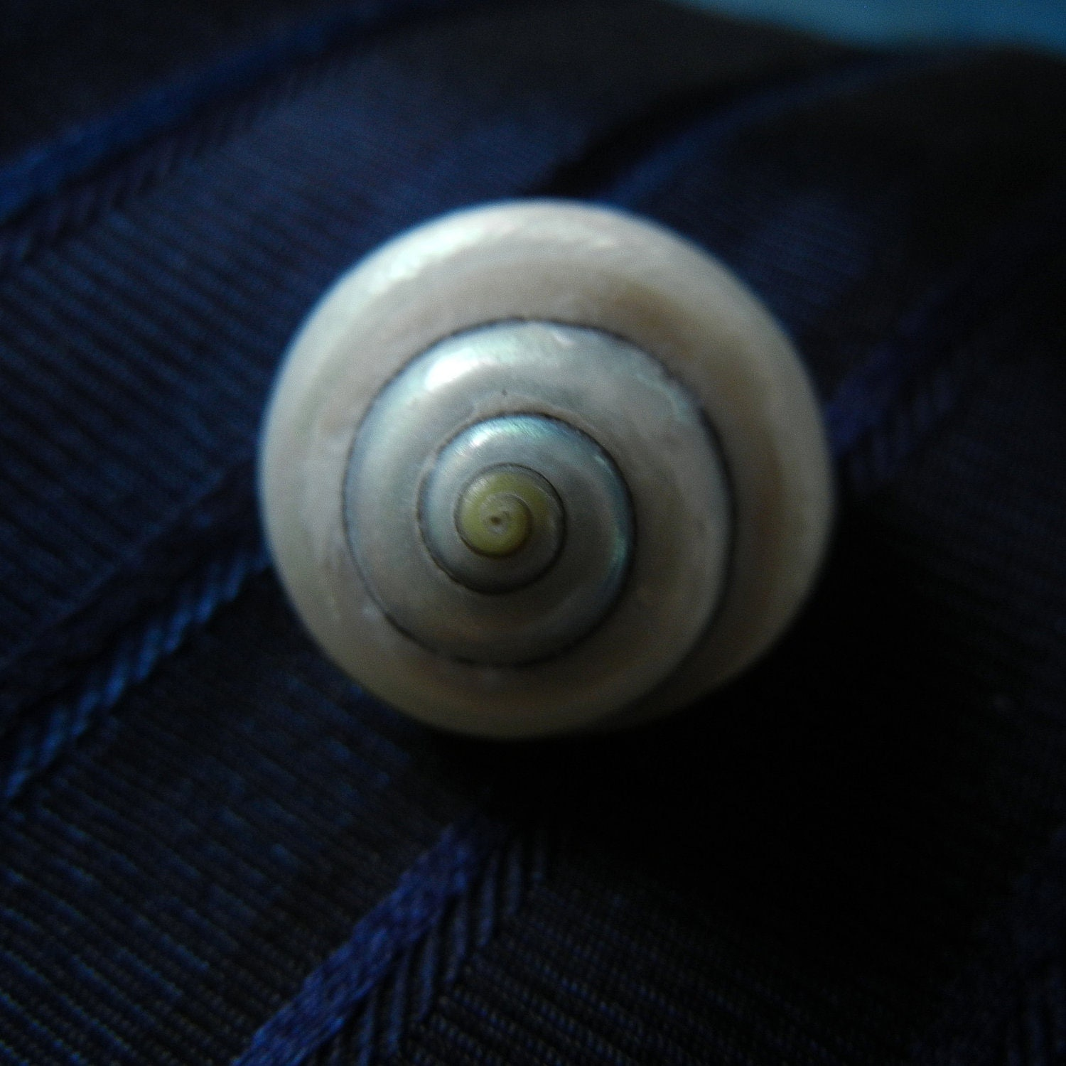 Pearly Spiral Seashell Tie Tac - ShellScapes