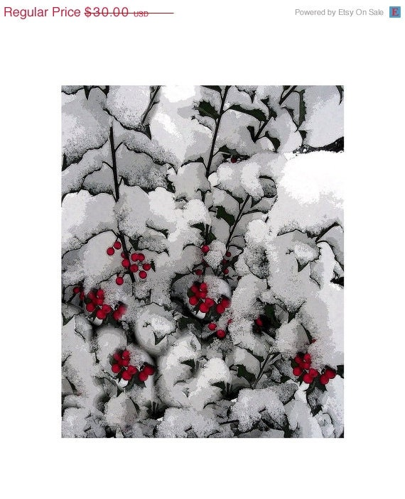 Snow Covered Holly, 8 x 10, Modern Graphic Art Photograph, Snowy  Winter Holly, The Maine View