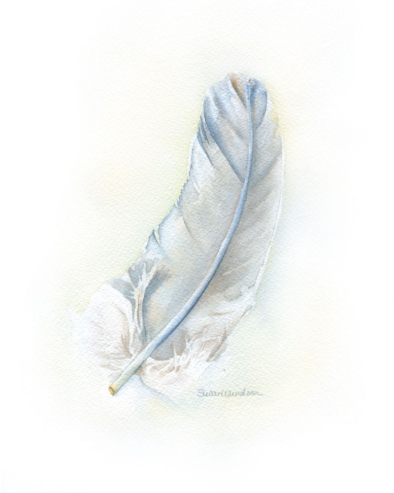 Gray Feather Watercolor Painting Fine Art Print 8 x 10 - SusanWindsor