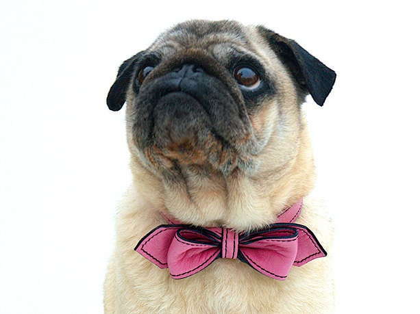 Wedding Pink Martini Bowtie Dog Collar - LuxeMutt