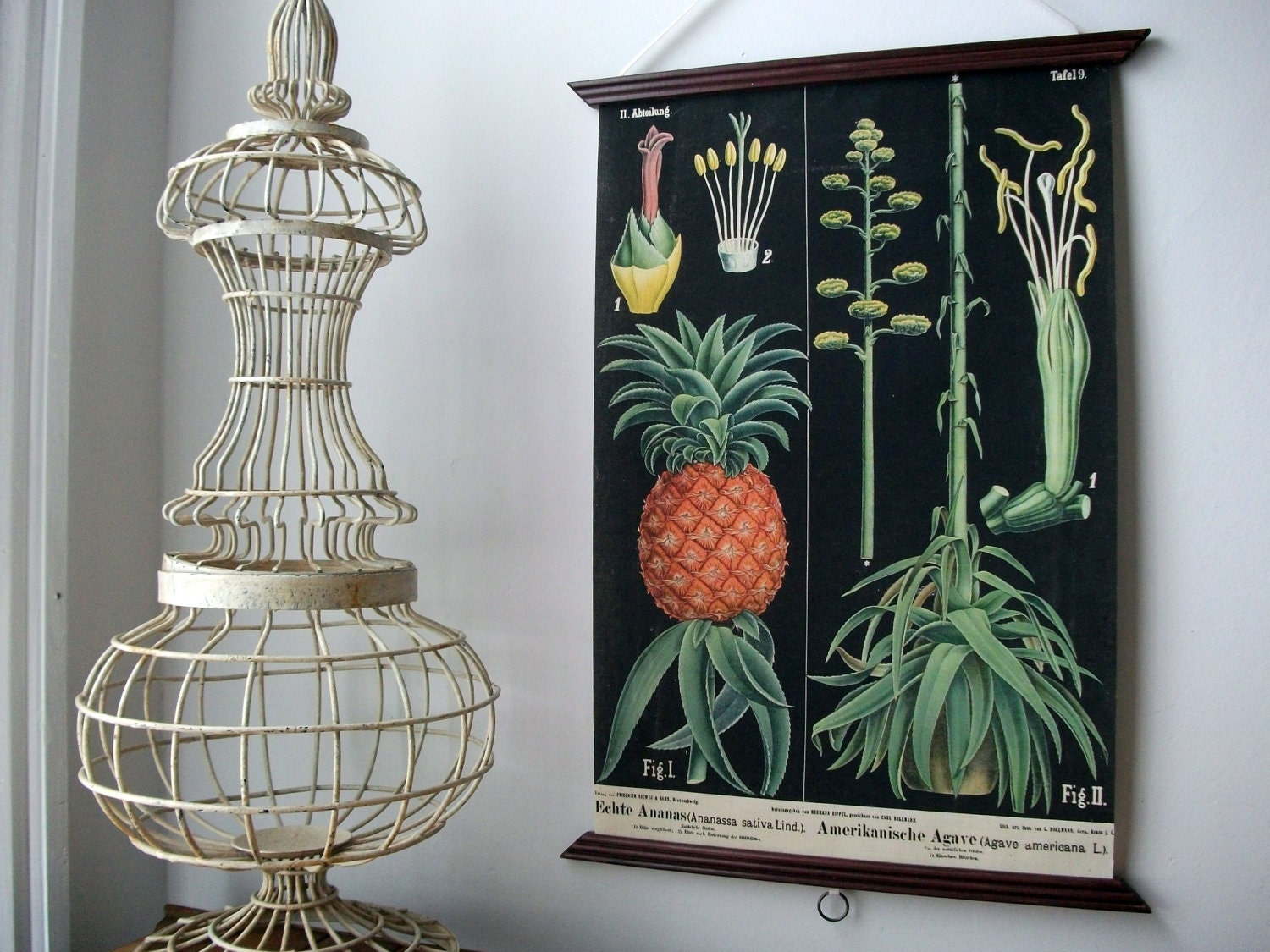 Vintage Pull Down Educational Chart Style Wall Hanging Print on Fabric with Stained Wood Trim  - Botanical Black Pineapple