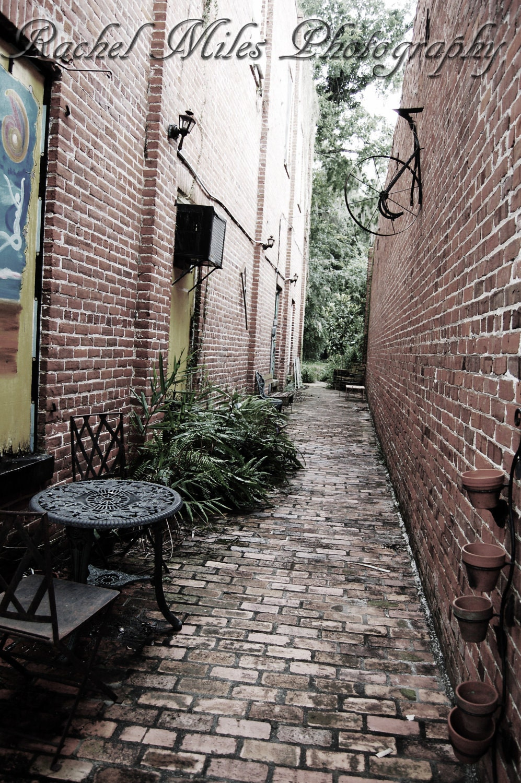 Just a walk down memory lane - 8 x 10 fine art photography - RachelMiles