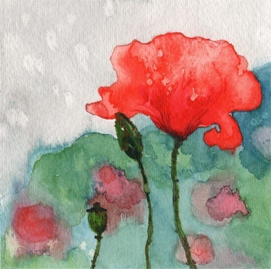 Poppy Temptation 10 Giclee PRINT from originl watercolor painting - siiso