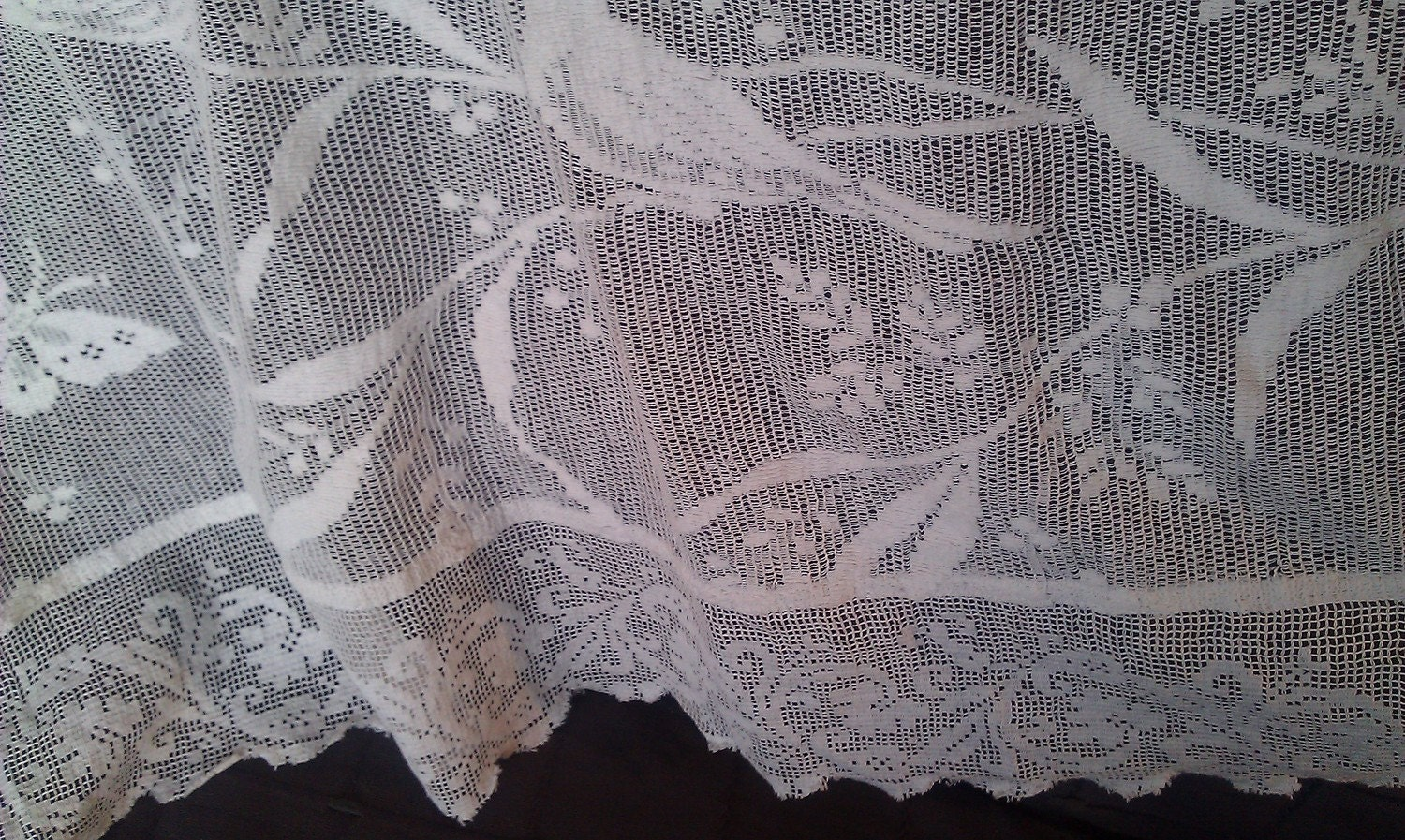 Rue De France Lace Curtains: Latest News, Photos and Videos