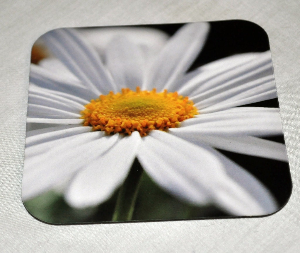 "Drink Coaster ""White Daisy"""