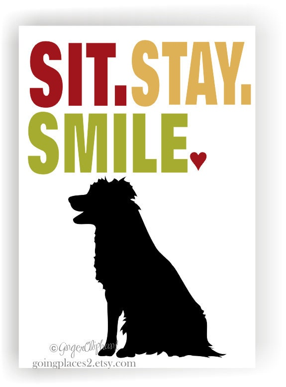 Border Collie Art Print Wall Decor Sit Stay Smile 5 x 7 Matted to fit Your 8 x 10 Frame - GoingPlaces2