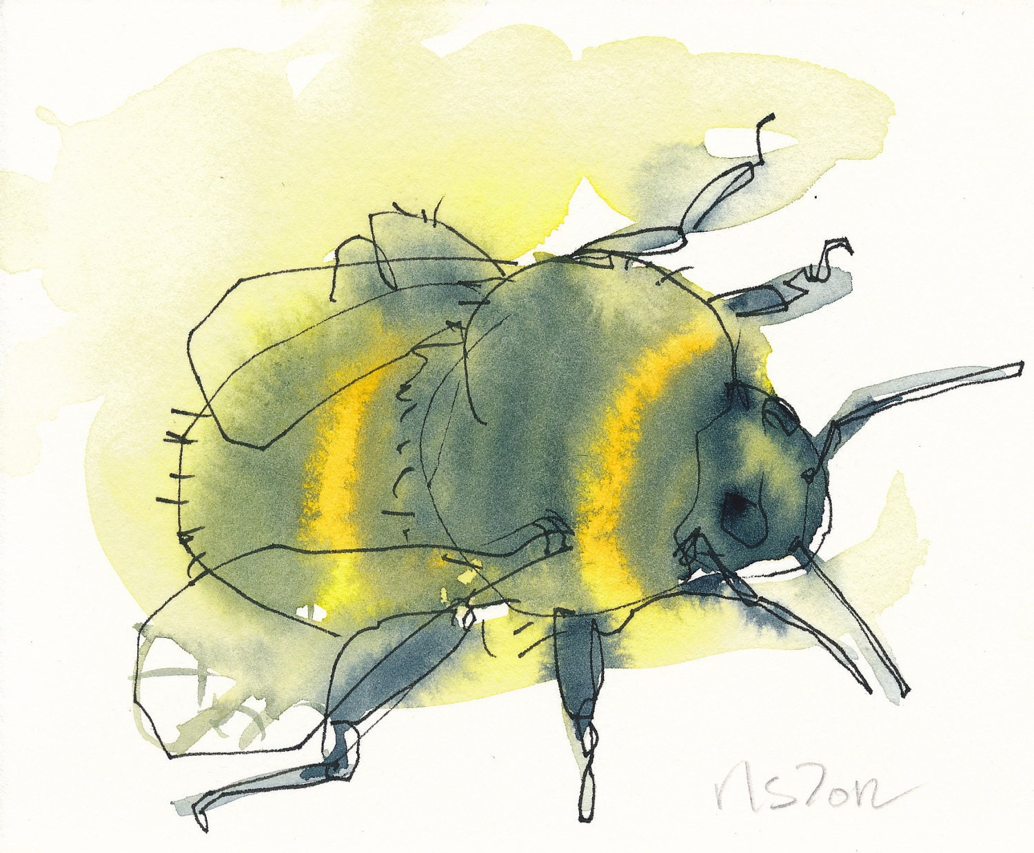 bee no. 3-a signed 5X7 bumblebee nature print - reneeleigh