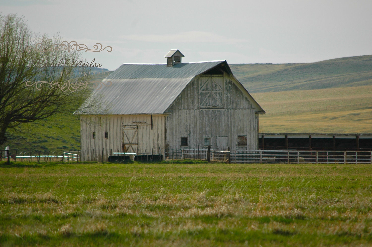Old Barn Fine Art Photography Print - RacheleMorlan