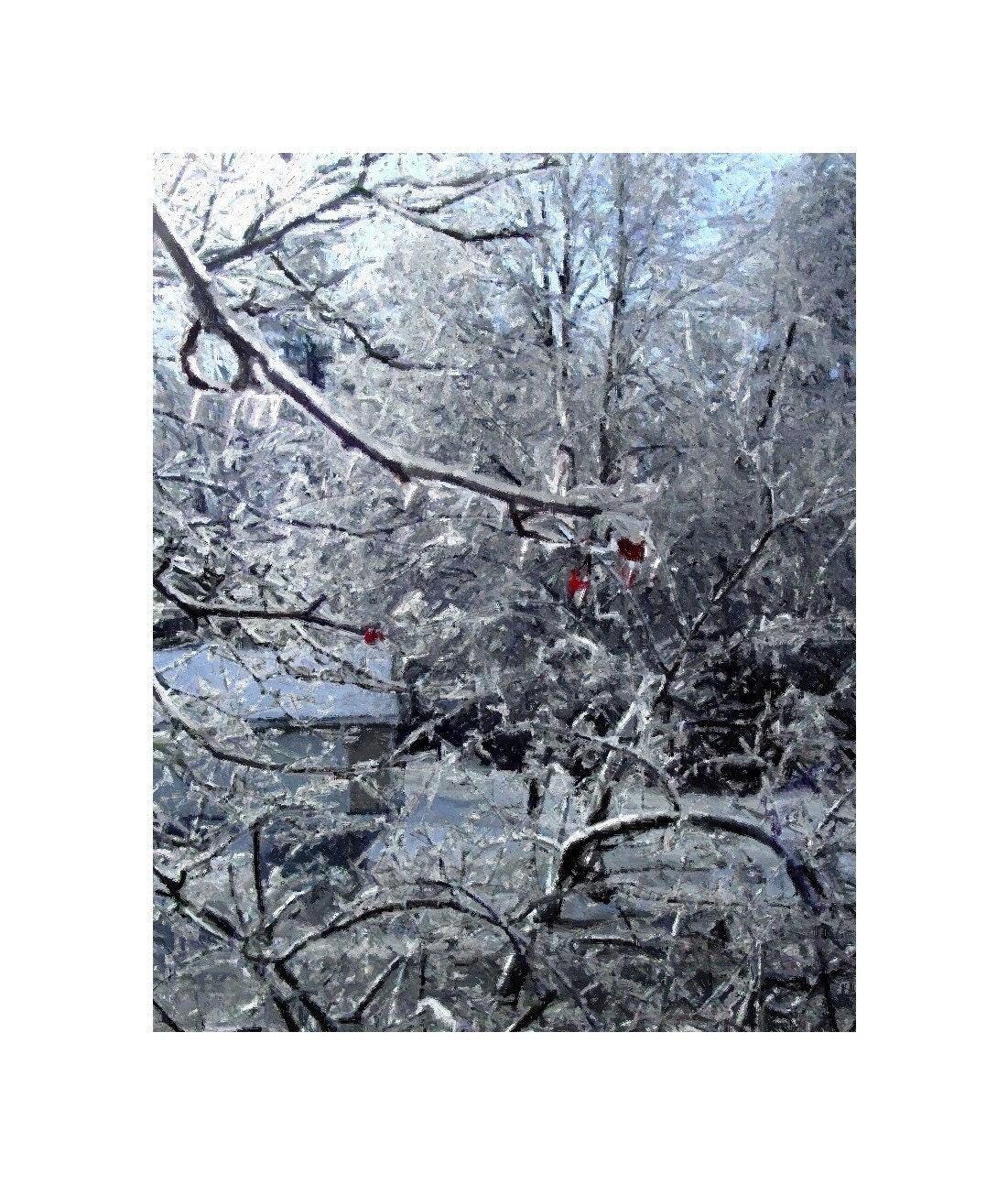 Maine Winter Ice Storm, 8 x 10, Painted Photograph, Three Red Berries In the Frozen Trees, Portland, Maine, Winter, The Maine View