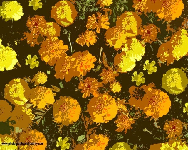 Autumn Marigolds Photo, Digital Painting,  20 x 16 inch,  Fine Art Poster Print