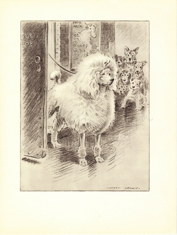 POODLE 1940s Dog Print Antique Animal Print Black by HucksterHaven
