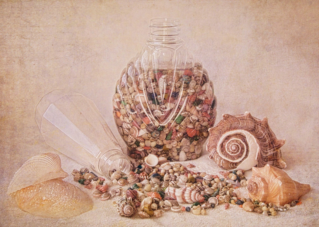 ACEO Print Seashells and Bottle Still Life - VBeaudry