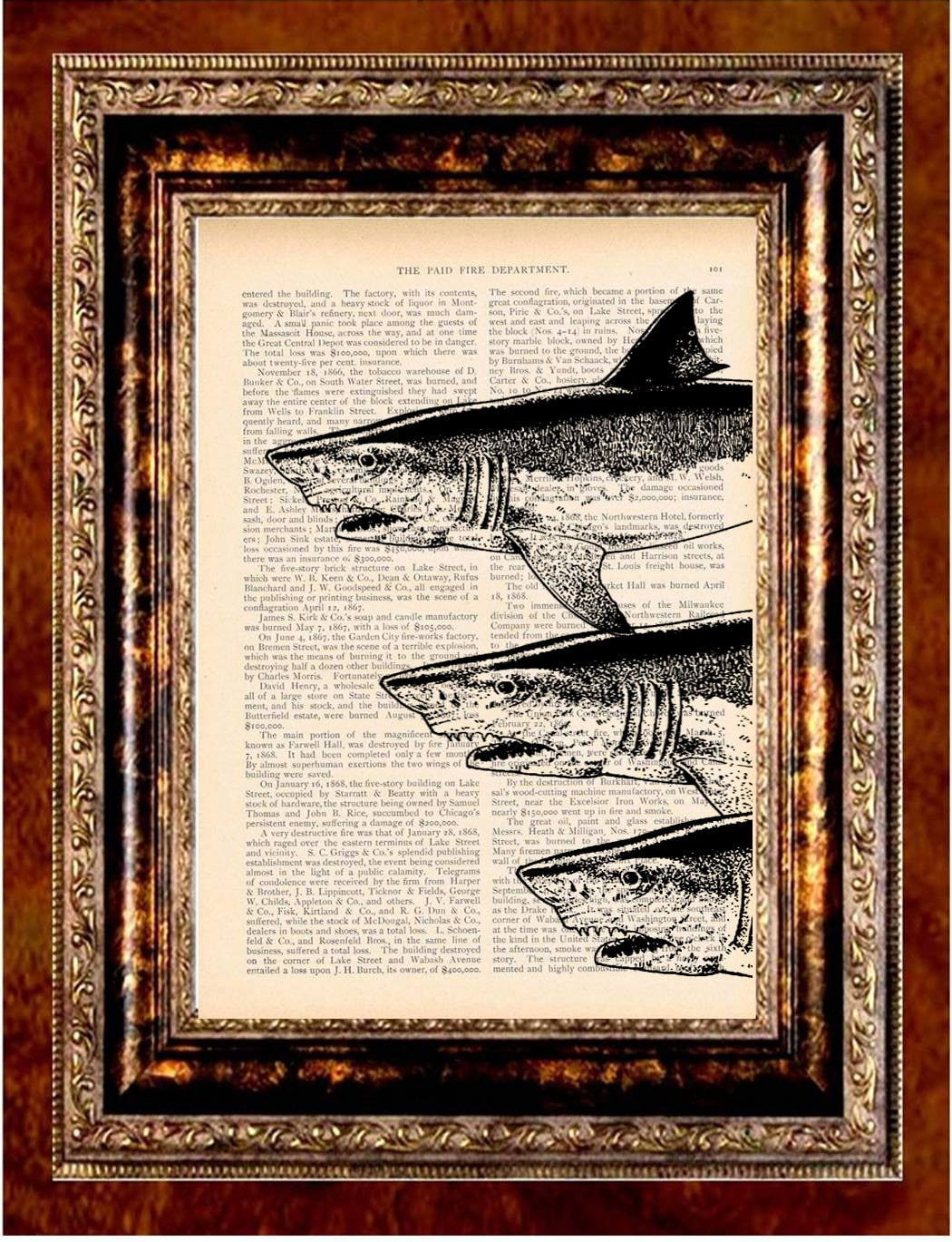 THREE SHARKS Vintage Art Print Antique 1800's Book Page or Dictionary Page Upcycled Recycled - newdayprints