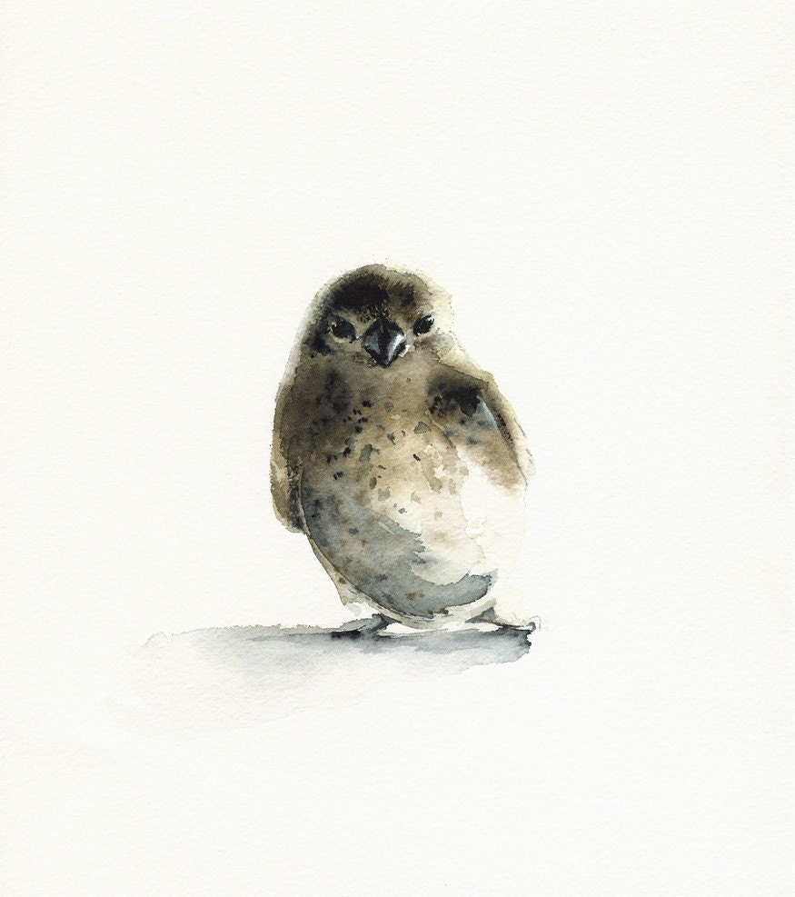 Tiny - bird art, nature, watercolor