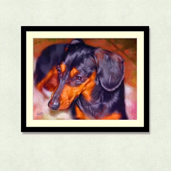 zoomdachshund