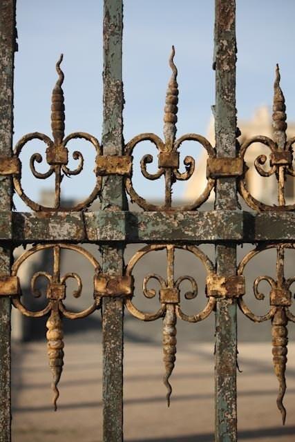 Paris Photography - Versailles Gate - Paris - France - Gold - Affordable home Decor - 8 x10 fine art print - rebeccaplotnick