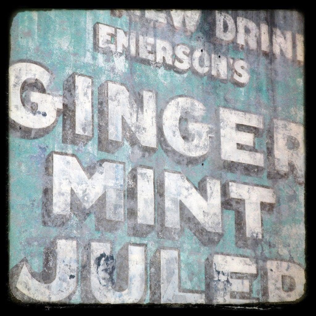 ginger mint julep . . . 5x5 fine art photography print