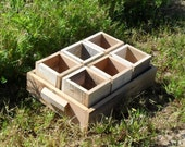 Individual Wooden Pots/ Herb Garden Pots With Wood Tray Earth Friendly Repurposed Eco Garden Small Wooden flower pots