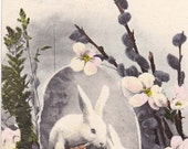Vintage Easter Post Card Early 1900s epc406