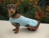 Dog Dress Turquoise Brown Polka Dot