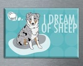 Australian Shepherd Magnet - Blue Merle Aussie - I Dream of Sheep 2x3 Dog Magnet