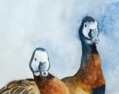 Duck PRINT from Duck Painting 8 x 10 ( Duck art PRINT for outdoorsman in cobalt blue brown rust gold golden gray grey black white yellow - rachellelevingston