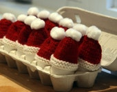 Santa Hat Egg Cozies - set of 2