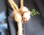 Naturally Colored Cotton Boll Boutonniere with Fern and Thistles