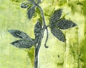 Passion Vine monoprint, ooak gelatin print