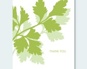 Parsley Thank You Note Card Set - 6