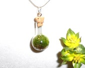FREE SHIPPPING, Terrarium, Living Gift, A gift of Life, Terrarium Pendant Necklace