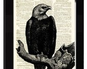 Eagle Dictionary Art Print with Antique Rag Cotton Paper and Antique Engraving