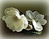 White Silk Flowers  5x7 Photo - rbfphotos