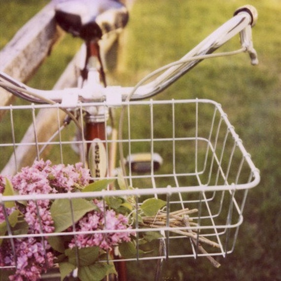 Polaroid Photography - Bike Photograph - Fine Art Photograph - Lilac- Spring - Summer Love- Signed