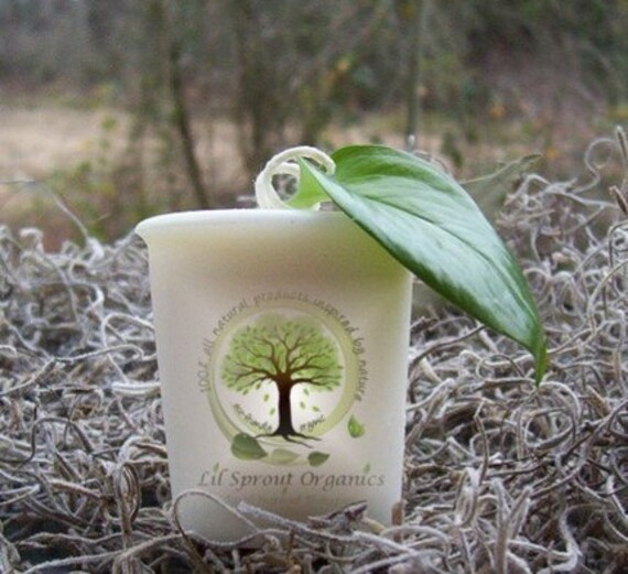 Organic APPLE CEDAR SPICE vegan all natural soybean votive candle pure essential oils eco friendly botanical aromatherapy