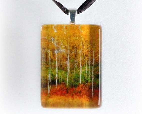 Autumns Palette - Birch Trees in Fall Color - Glass Tile Photo Pendant - Original Photography
