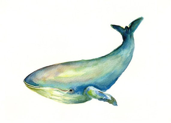 WHALE by DIMDImini ACEO print