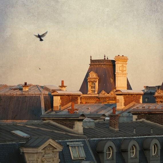 Paris Photo - Париж Рассвет, Отель де Виль - крыши Парижа, Франция, в Morning Sun с птицами, изобразительного искусства Путешествия Фотография