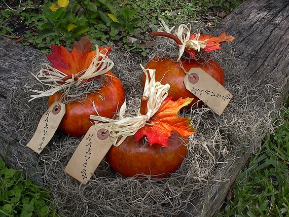 Painted Gourd Autumn Home Decor Harvest Pumpkins Fall Bowl Fillers Ornies Table Place Settings